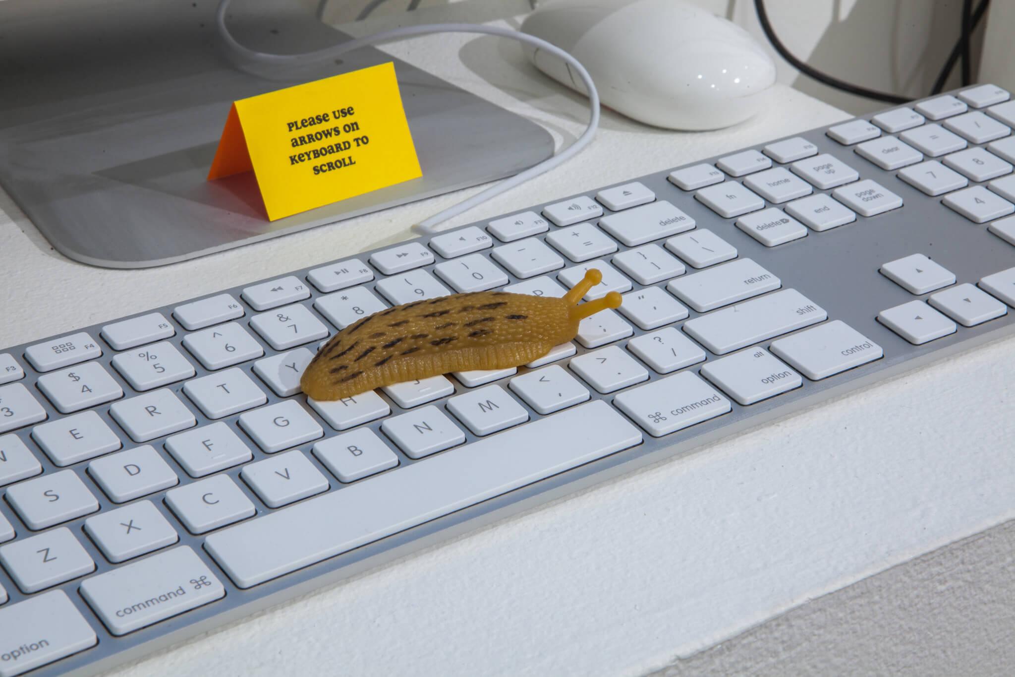 slug-keyboard