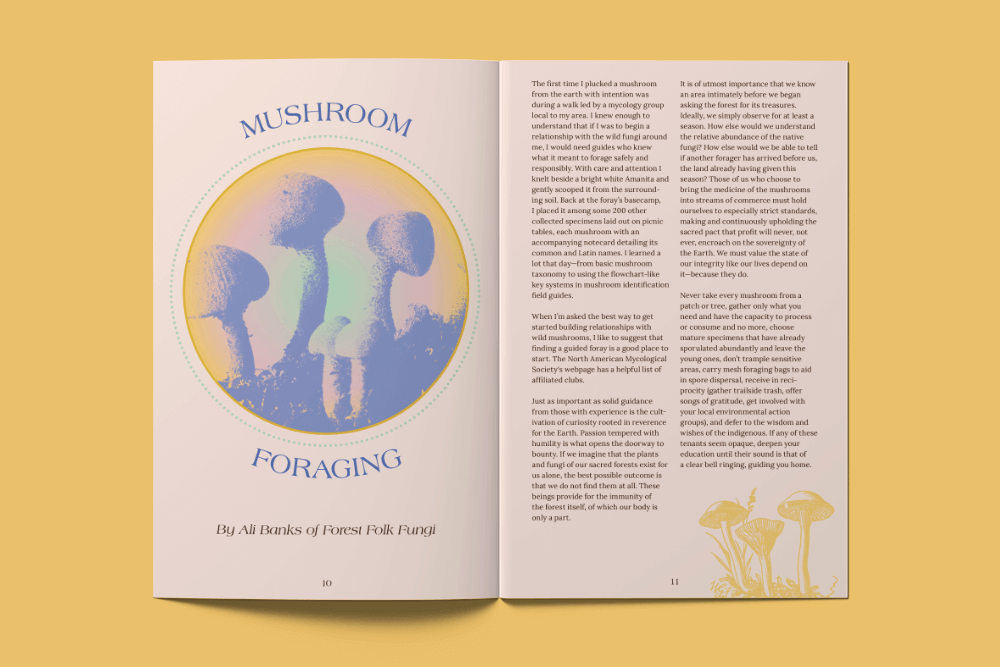 Mushrooms_Mockup_Spread2